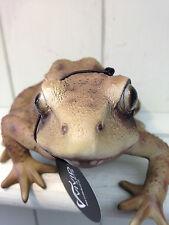 Frog Real life Vivid Arts Garden Ornament