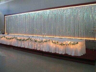 Opalescent METALLIC CURTAIN Party Decoration FROZEN Winter Dance WEDDING