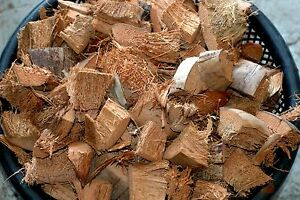 Details about Coconut Husk fiber, Chips, for Orchids flowers- 350 grams