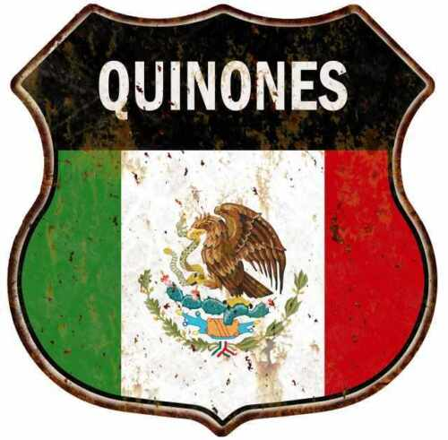QUINONES Mexican Flag Personalized Shield Metal Sign Mexico 211110008188
