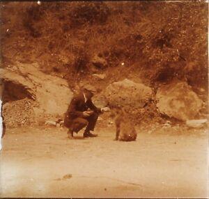 Uomo Animale Foto Stereo PL59L1n35 Placca Da Lente Vintage
