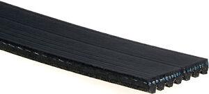 ACDelco 7K873 Professional V-Ribbed Serpentine Belt