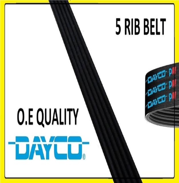 Dayco 5PK900 Fan Drive Belt Fits BMW 7 Series Fiat Tempra