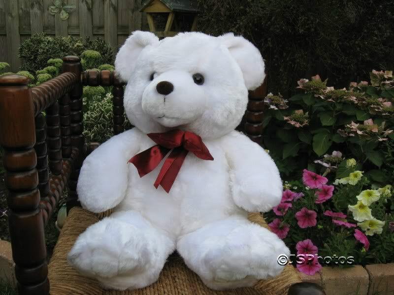 UK Jumbo 19 Inch Teddy Bear bianca Shiny Fur