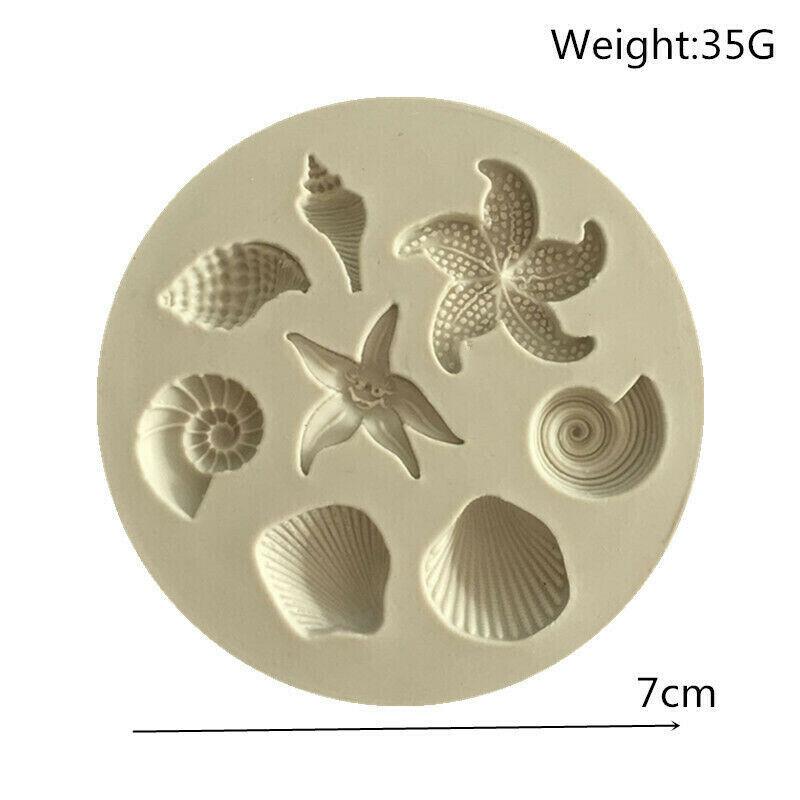 #36 Sea Shell