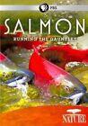 Salmon 0841887014595 DVD Region 1 P H