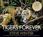 Tigers Forever : Saving the World's Most Endangered Big Cat by Sharon Guynup and Steve Winter (2013, Hardcover)