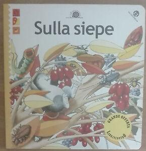 Sulla-siepe-AA-VV-La-coccinella-2001-A