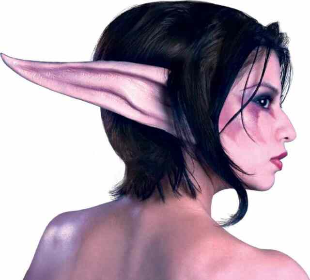 Night Elf Kit World of Warcraft WOW Ears Makeup Halloween Costume Accessory