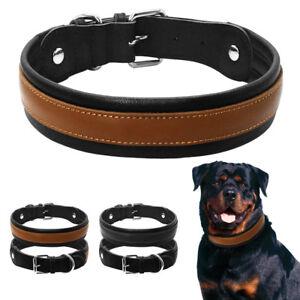 durable dog collars