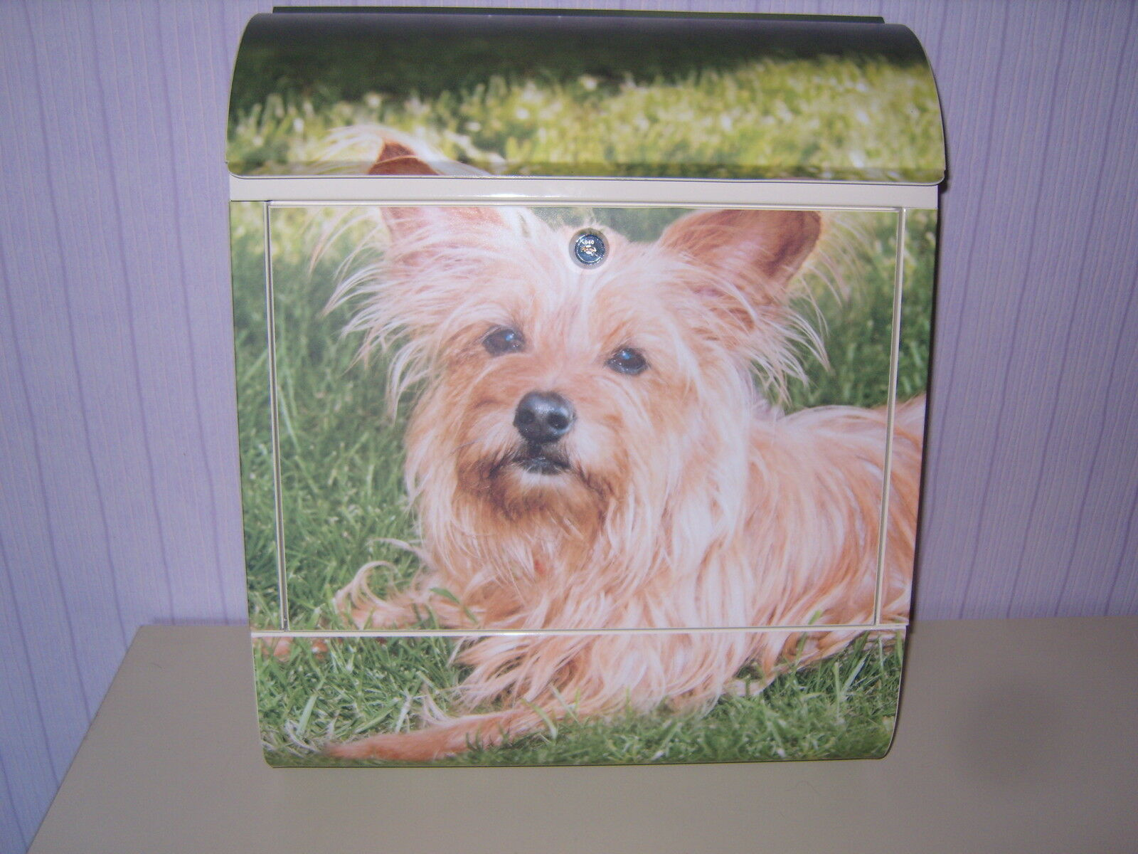 Briefkästen mit braunem Yorkshire Terrier Motiv Hund mit Gebell beim Öffnen süss