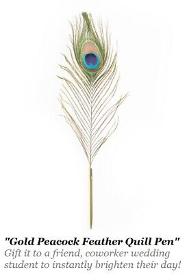 """14/"""" PEACOCK QUILL FEATHER Gold Ballpoint Pen for friend coworker wedding student"""