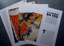 Document SAM FRANCIS La lumiére en feu , peinture clipping