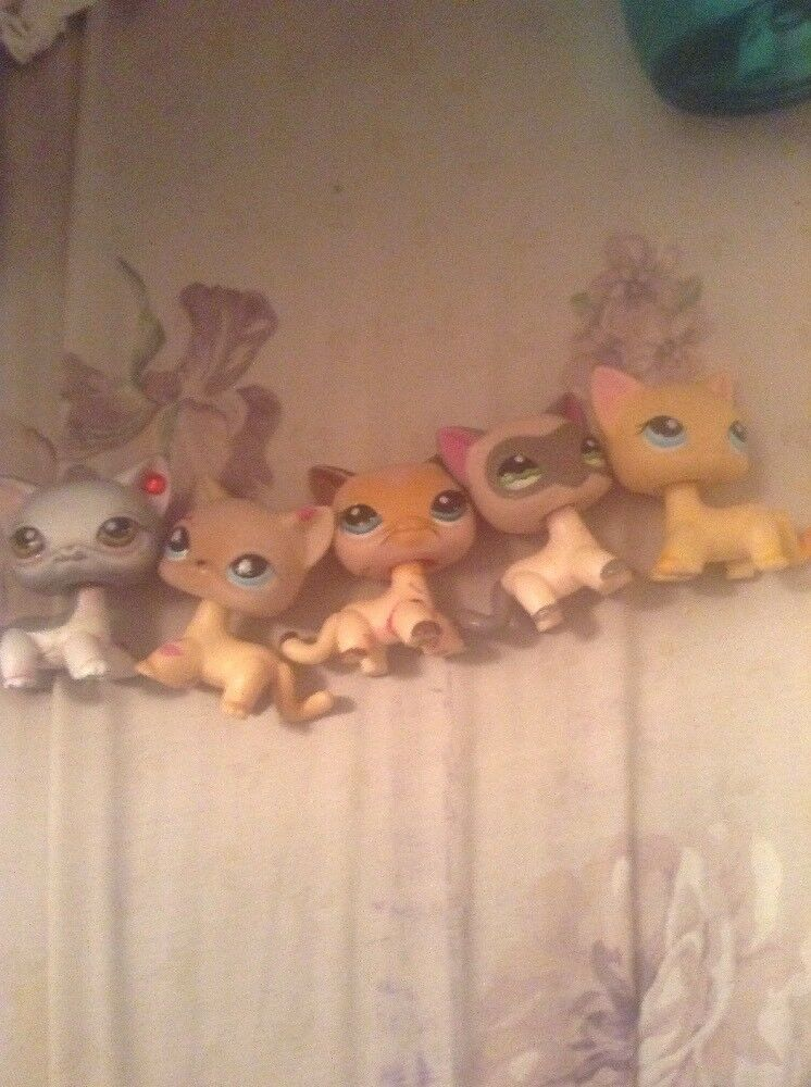Tips On How To To To Know If You're Buying a Fake Littlest Pet Shop On   (READ DESC 8f0015