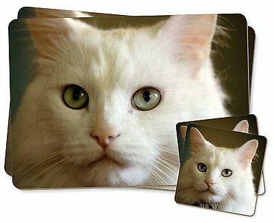Affidabile Gorgeous White Cat Twin 2x Placemats+2x Coasters Set In Gift Box, Ac-79pc