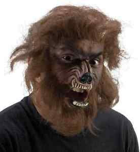 image is loading werewolf fx kit wolf animal dress up halloween - Halloween Werewolf
