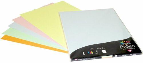A4 Pollen Papier 120g 50 Blatt pastell