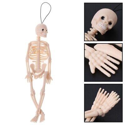 Bones Pose Skeleton Human Dog Skeleton Model PVC Figure Phone Strap 3x Mr