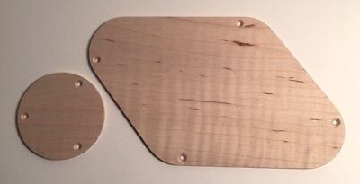 Replace PRS Plastic Guilford Flame Maple Electronics Backplate Made in USA
