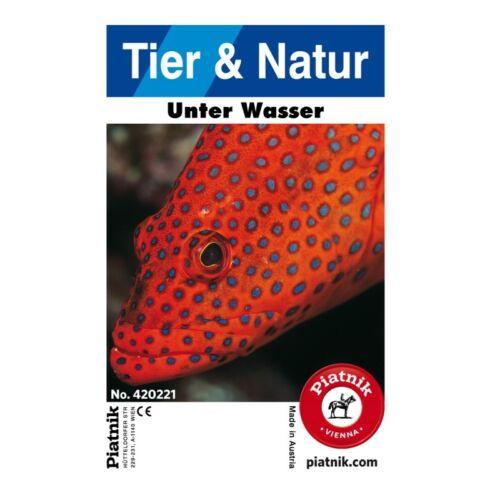 32 Blatt Piatnik 420221 Quartett Tier /& Natur Unter Wasser