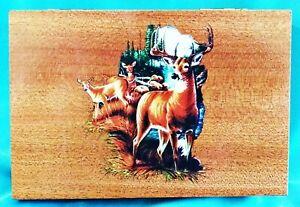 Small Buck Doe Deer Image Green Felted 6 25 L Wooden Storage Box Ebay