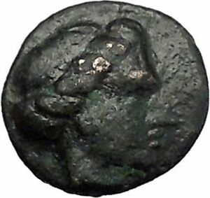 Histiaia-in-Euboia-338BC-Nymph-amp-Cow-Genuine-Authentic-Ancient-Greek-Coin-i49486