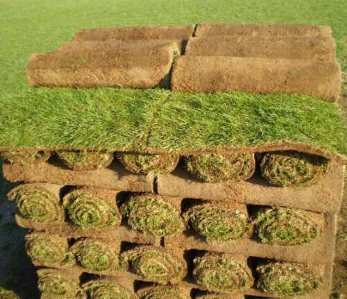 Fresh//Real Garden Turf Rolls from £2.28 per sq.metre Cheap Turf Lawn Grass