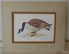 Canada Goose Print Double Matted John Allen 8 x 10