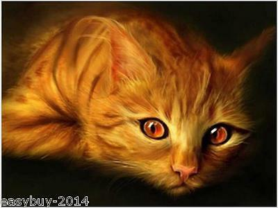 Cat Diamond Embroidery 5d Diamond DIY Painting  Cross Stitch