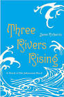 Three Rivers Rising: The Novel of the Johnstown Flood by Jame Richards (Paperback / softback, 2011)