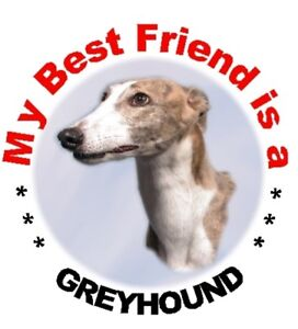2-Greyhound-Car-Stickers-By-Starprint-Auto-combined-postage