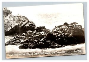 Vintage Early 1900's RPPC Postcard Seals Cliff House San Francisco UNPOSTED