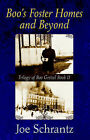 Boo's Foster Homes and Beyond by Joe Schrantz (Paperback / softback, 2005)