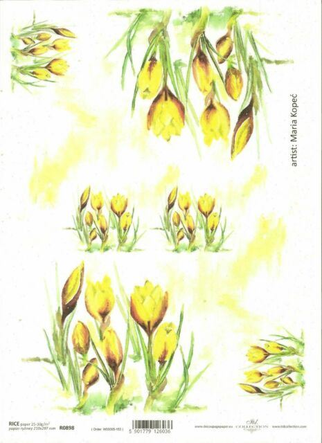 Rice Paper for Decoupage Scrapbooking Painted Yellow Crocus Flowers A4 ITD R898