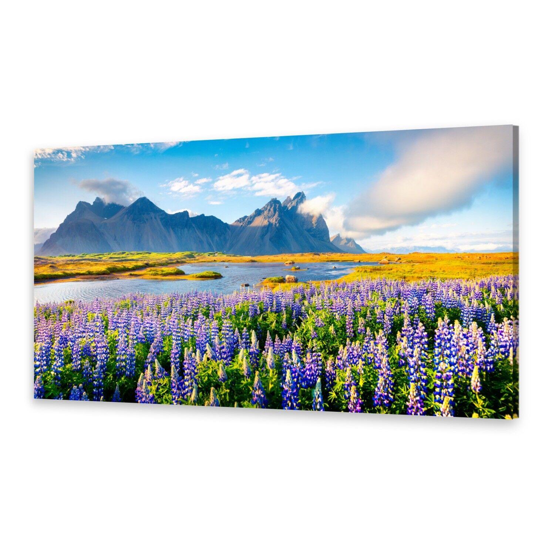 - Tela Immagini Immagine Parete stampa su canvas stampa d'arte fiori Lupino