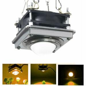 2× 300W Watt COB Led Grow Light Full Spectrum Lamp For Plant Hydroponics Flower