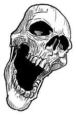 Skull Aufkleber Totenkopf Motorrad WOHNWAGEN LKW Tank Helm Bike Schädel #15