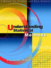 Understanding Statistical Methods: A Manual for Students and Data Analysts by Chester H McCall (Paperback / softback, 2000)