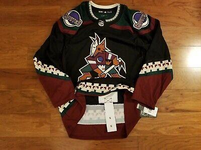 phoenix coyotes kachina jersey