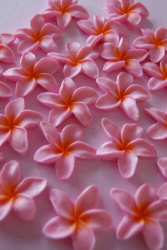 Sugarpaste flower PINK FRANGIPANI PLUMERIA  edible sugar cupcake topper
