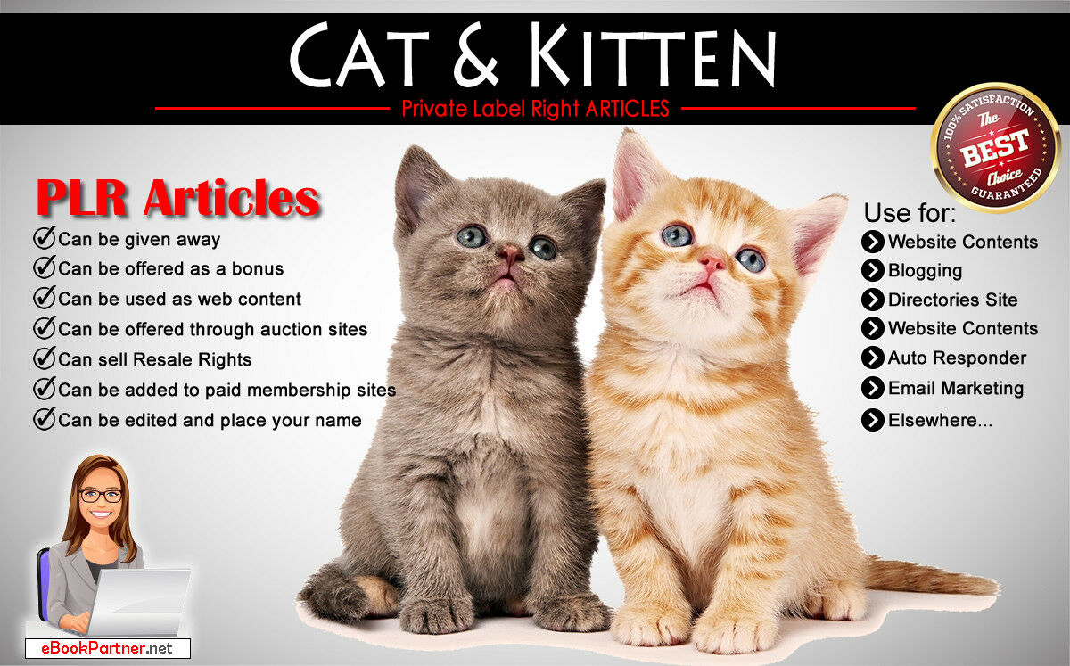 120+ PLR Articles on Cat and Kitten Niche Private Label Rights
