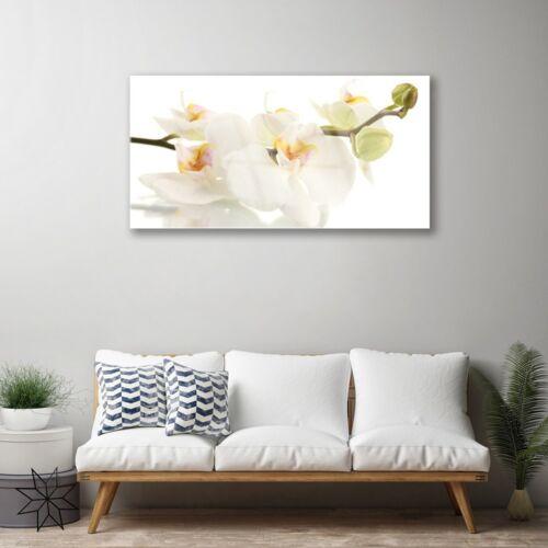 Glasbilder 100x50 Wandbild Druck auf Glas Blumen Pflanzen