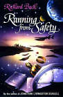 Running from Safety: An Adventure of the Spirit by Richard Bach (Hardback, 1996)