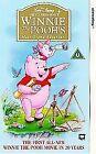 Winnie The Pooh's Most Grand Adventure (VHS/SUR, 1997)