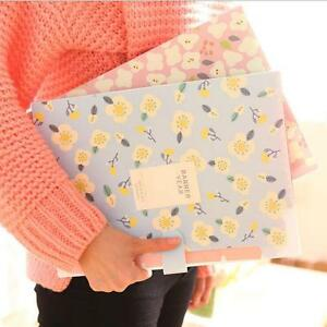 "/""Banner Year/"" 1pc File Folder Plastic Document Bag Study Organizer 8 Pockets"