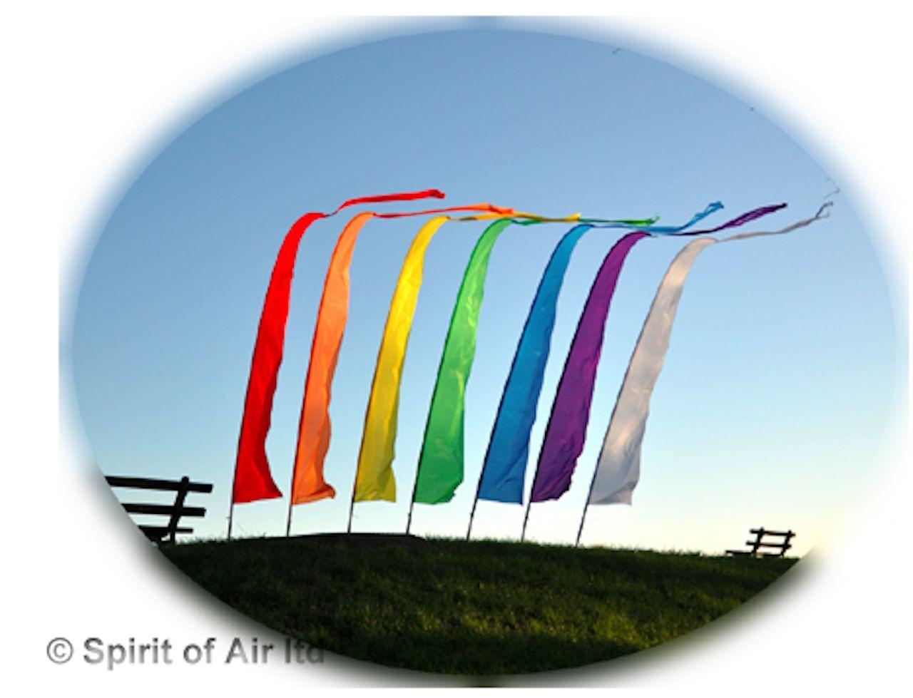 Spirit of of of Air Festival Bannière Kit-Bannière, 3.75 M pliant pole, Ground Spike 2a3fe6
