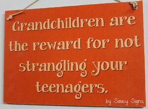 Strangle-Teenagers-Kids-Grandchildren-Family-Rustic-Wooden-Country-Shabby-Sign