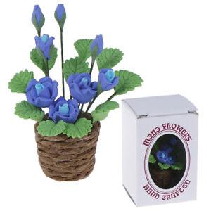 1Pc 1:12 Dollhouse Miniature Garden Ornament Green Plant Flower Garden Access ZP