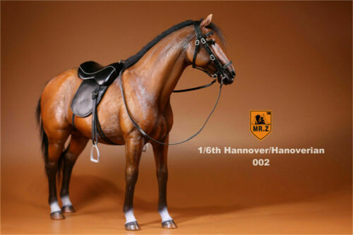 NEW Mr.Z 1//6 Germany Hanover Horse Figure Steed Mount Animal Model Collector Toy