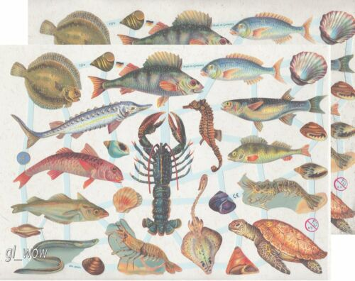 Chromo EF Découpis Animaux de la Mer 7374 Embossed Illustrations Sea Animals